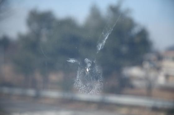 유리벽에 충돌한 것으로 보이는 새의 흔적이 남아 있다. [국립생태원 제공]