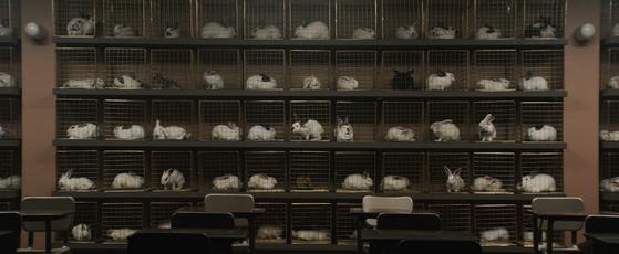 토끼장은 영화 초반에 카메라의 움직임과 함께 강렬하게 등장한다. [사진 UPI코리아]