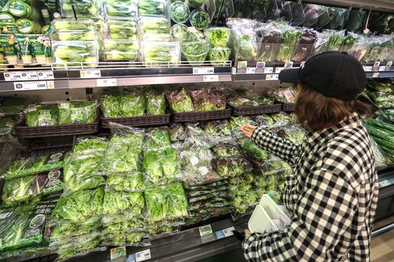 서울 시내 한 대형마트에서 시민들이 채소를 살펴보고 있다. [뉴스1]
