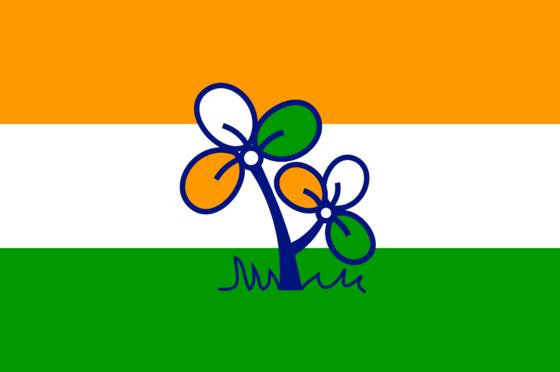 인도 국기에 풀잎을 그려놓은 인도풀뿌리의회당의 깃발. [중앙포토]
