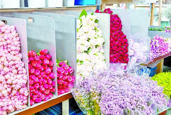 서울고속버스터미널 3층에 있는 꽃 도매상가에는 다양한 꽃이 있다. 같은 장미라 해도 종류가 여러 가지다.