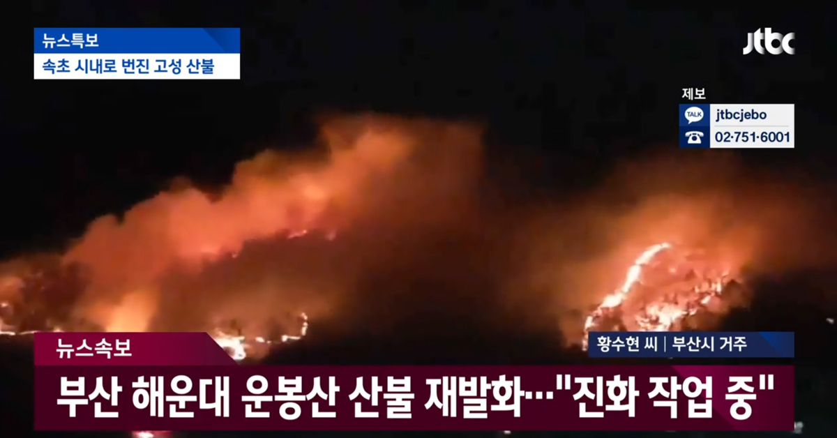 5일 오전 0시10분쯤 부산 해운대 힌 중학교 뒤편 운봉산에서 산불이 재발화했다. [JTBC 캡처]