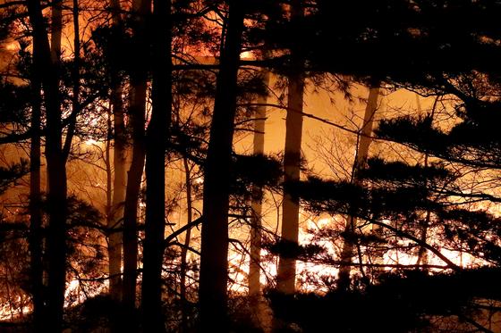 4일 강원도 고성에서 발생한 산불이 강풍을 타고 인근 속초까지 번졌다. 5일 오전 속초시 장사동 인근 산림이 불에 타고 있다. 장진영 기자