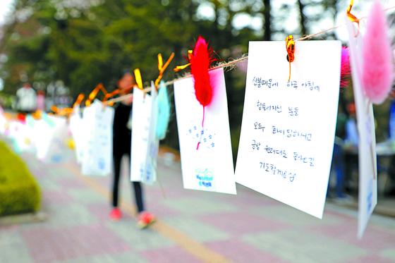 9일 오후 강원 춘천시 강원대학교 연적지 일원 도보 위에 학생들이 직접 작성한 동해안 산불 이재민 응원 편지글이 걸려 있다. [뉴스1]