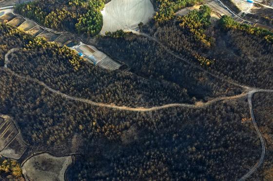 강원 고성·속초 일대 산불이 이틀째 계속된 5일 오후 강원도 고성군 토성면 성천리 일대 산의 나무들이 산불로 타 검게 보이고 있다. [뉴스1]