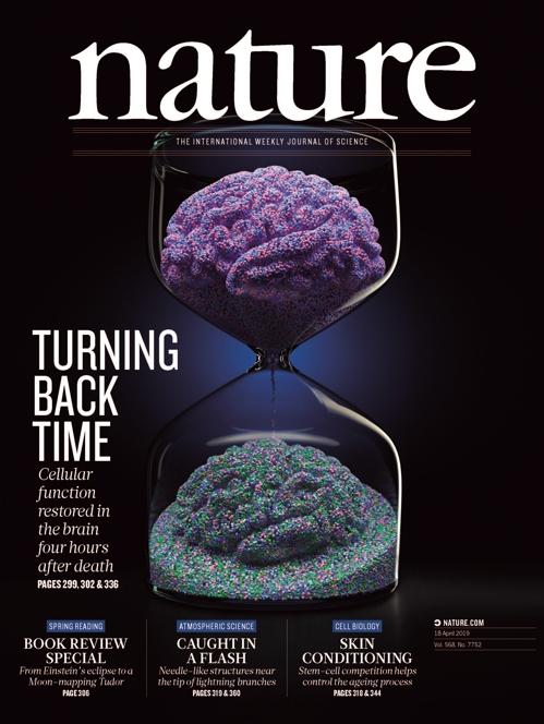 뇌 세포의 부활을 모래시계로 표현한 국제학술지 '네이처' 표지. [사진 Nature]