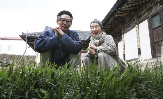 고진하 목사네 한옥 마당에는 잡초가 무성하다. 뽑아야 할 풀이 아니라 귀하디 귀한 요리 재료다. 임현동 기자
