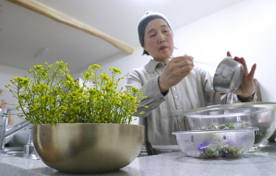 """권포근 여사가 잡초를 가지고 요리를 하고 있다. 최근에는 유투브에 '권포근의 건강요리'라는 잡초 요리 채널을 만들었다. 권 여사는 """"지역의 로컬마켓에 잡초가 상품으로 나오는 날이 오기를 기대한다. 그럼 도시에 사는 사람들도 잡초를 먹을 수 있을 것""""이라고 말했다. 임현동 기자"""