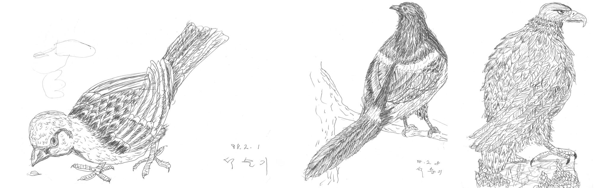 네살 아들에게 주려고 볼펜으로 그린 새. 이 그림에서 화가로서 그의 삶이 비롯되었다. [그림 석창우]