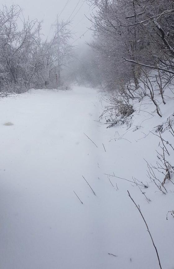 26일 내린 눈으로 강원도 향로봉 인근에 많은 눈이 쌓였다. [강원지방기상청 제공]