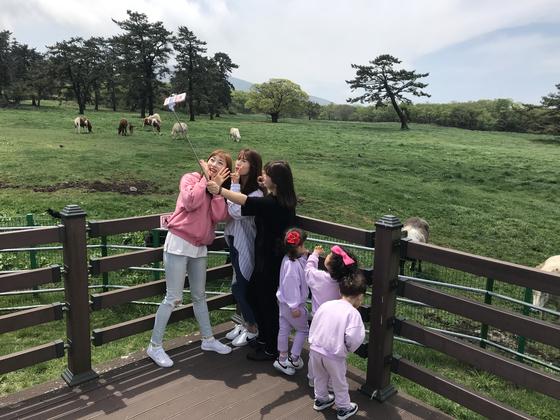 지난 25일 제주 마방목지를 찾은 관광객들이 사진을 찍고 있다. 최충일 기자