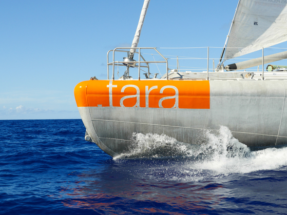 전 세계 약 80여곳에서 3년간 바닷물 샘플을 채취, 바이러스 지도를 만든 '타라 재단'의 프로젝트 '타라 오션스 엑스퍼디션'은 알루미늄 범선 '타라'를 기반으로 이뤄진다. [사진 타라재단]