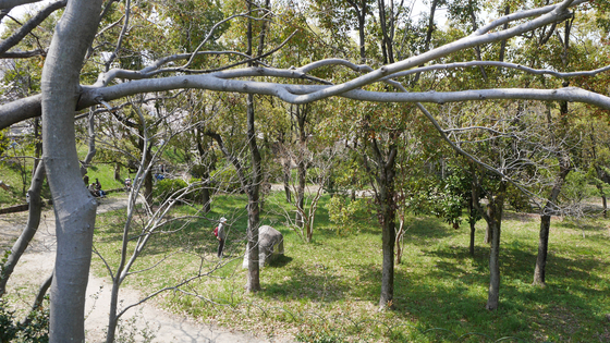윤봉길 의사의 마지막 수감 터인 육군위수형무소가 있던 오사카 성 공원. [사진 홍미옥]