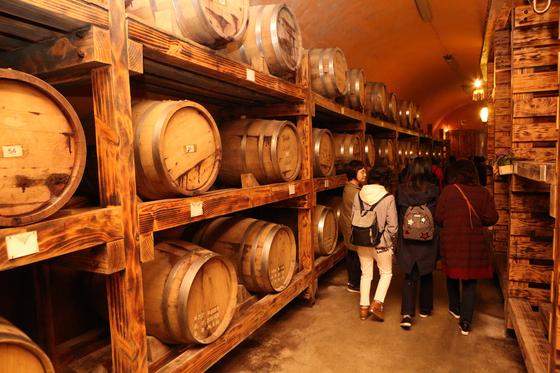 파주 시티투어 코스에 포함된 산머루농원. 지하에 와인 숙성 창고가 있다. [사진 경기관광공사]