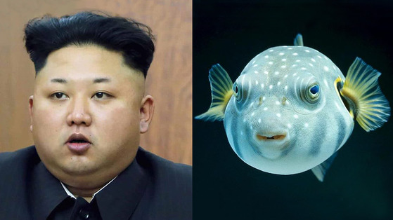 북한 김정은 위원장 복어상ㆍ사자상. [사진 백재권]
