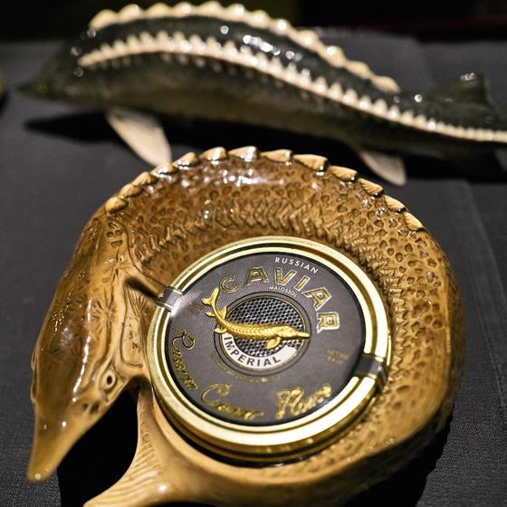 철갑상어 알인 캐비아는 푸아그라, 송로버섯과 함께 세계 3대 진미로 꼽히는 식재료다. 러시아 카스피해 자연산을 최고로 친다. [사진 노승환]