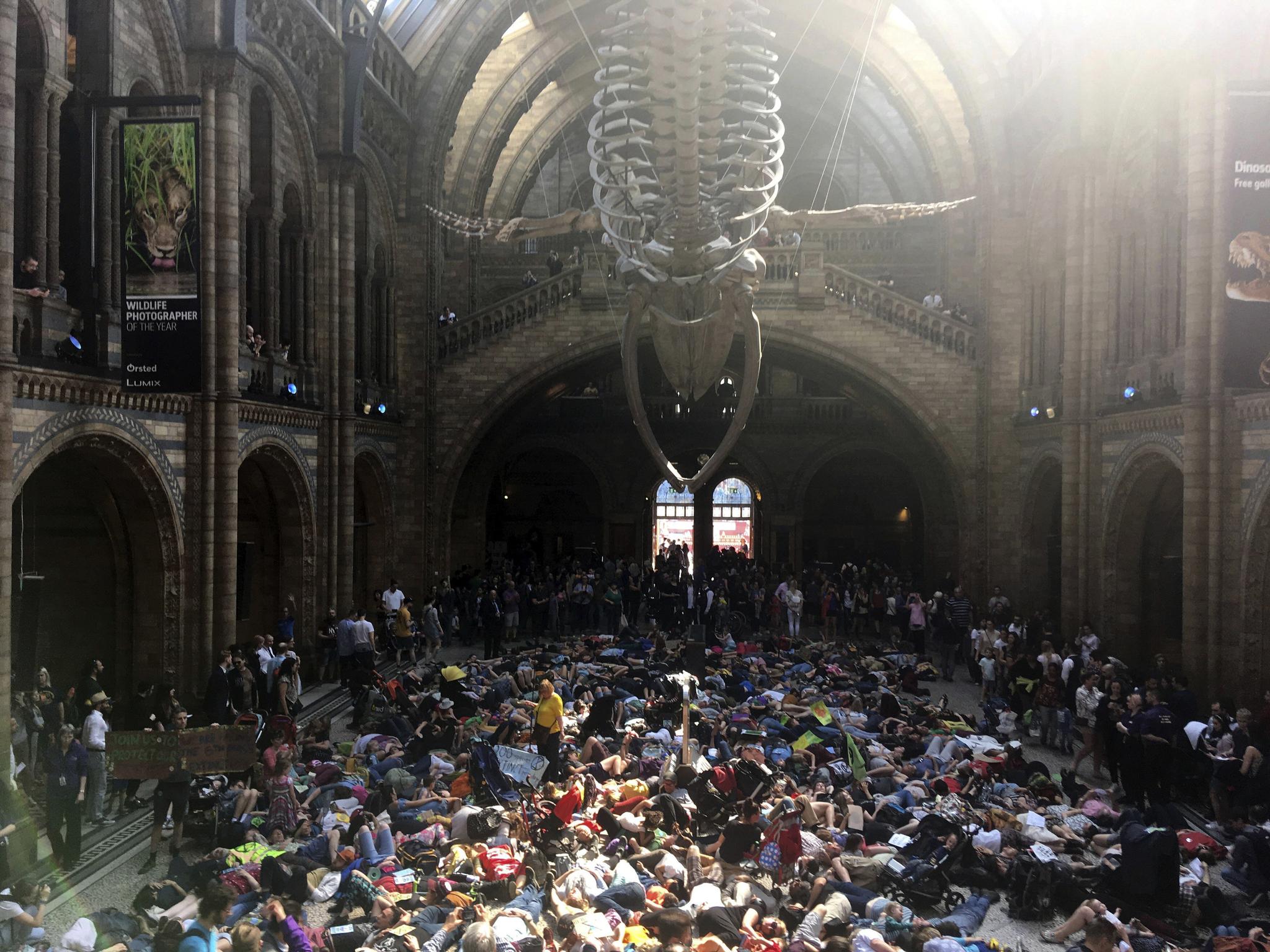 멸종 저항 시위대가 지난달 22일(현지시간) 런던의 자연사박물관을 점거하고 드러누워 있다. [AP=연합뉴스]