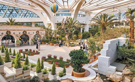 서울식물원 온실의 지중해관에선 올리브·레몬·허브 등 지중해를 대표하는 식물을 만날 수 있다.