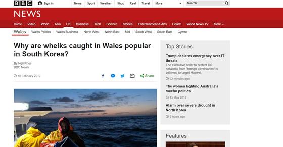BBC는 골뱅이가 한국에서 aphrodisiac이라고 썼던 원래 제목을 '왜 한국에서 웨일즈 골뱅이가 인기일까'로 수정했다. [BBC 웹사이트 캡처]