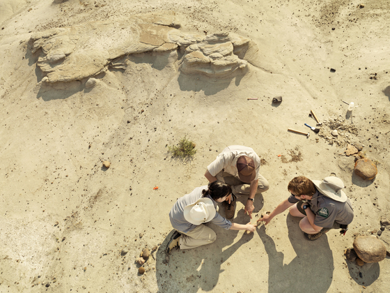 공룡 주립공원에서는 화석 발굴 작업이 계속되고 있다. 전문가와 함께하는 투어 프로그램이 다채롭다. [사진 캐나다관광청]