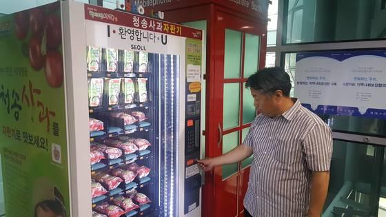 한 시민이 서울시청에 설치된 사과자판기에서 사과를 뽑고 있다. 서준석 기자