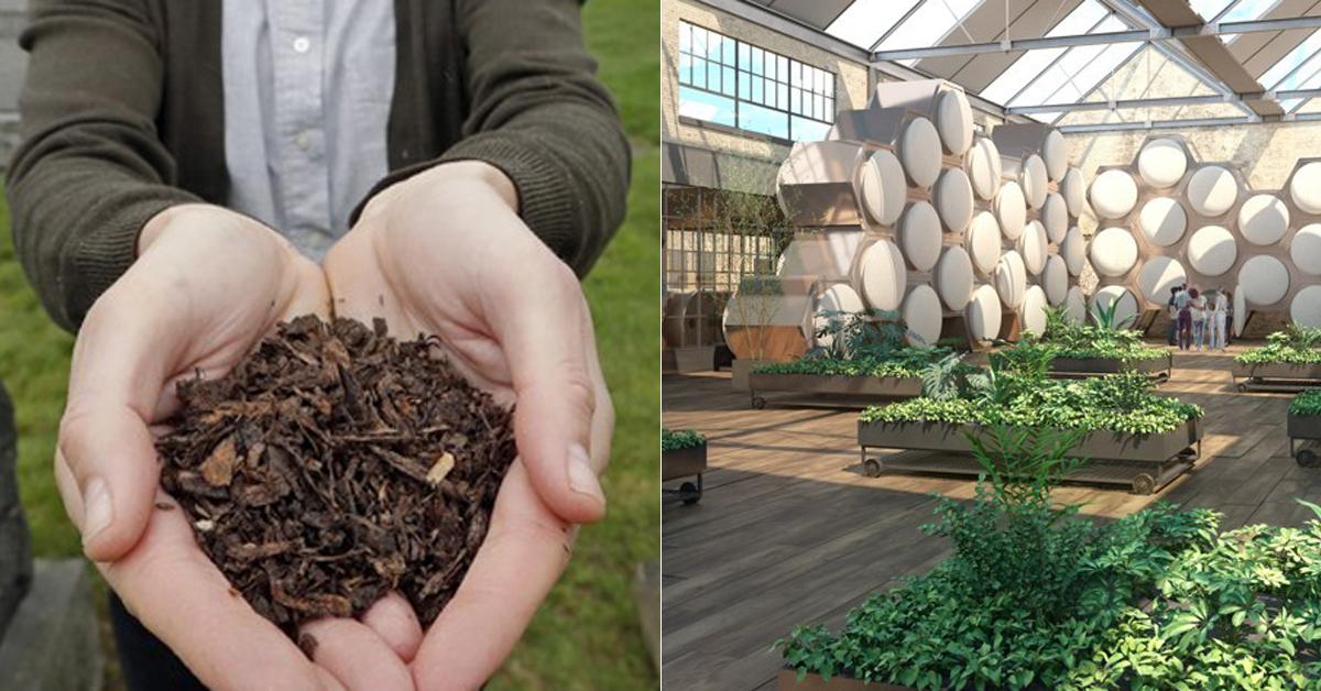 소의 사체를 분해해 얻은 흙(왼쪽)과 리컴포즈 시신 처리실의 모습. 벌집처럼 생긴 원기둥 통 하나에 시신 한 구가 들어가 처리된다. [AP=연합뉴스]