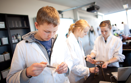 덴마크 학생들은 자유롭게 진로를 결정할 수 있다. 공부를 지속할지 직업 공부를 할지는 개인의 선택이다.