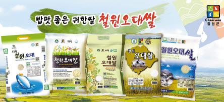 철원오대쌀은 철원 지역서 재배되는 쌀로 브랜드를 등록했다. [사진 철원군]