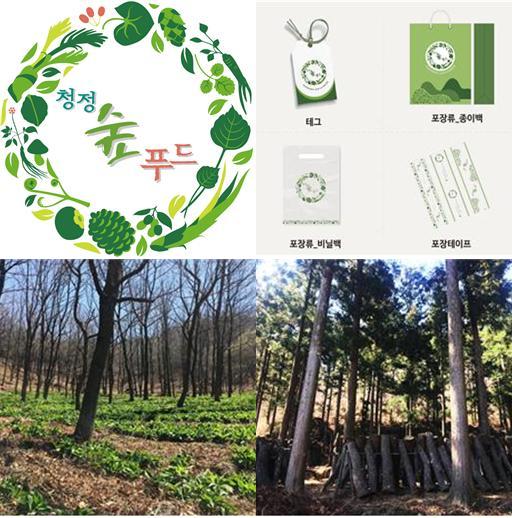 왼쪽 위부터 시계 방향으로 청정숲푸드 브랜드 로고, 청정숲푸드 로고 적용 예시(포장류), 청정숲푸드 지정 산마늘 재배, 청정숲푸드 지정 표고버섯 재배지