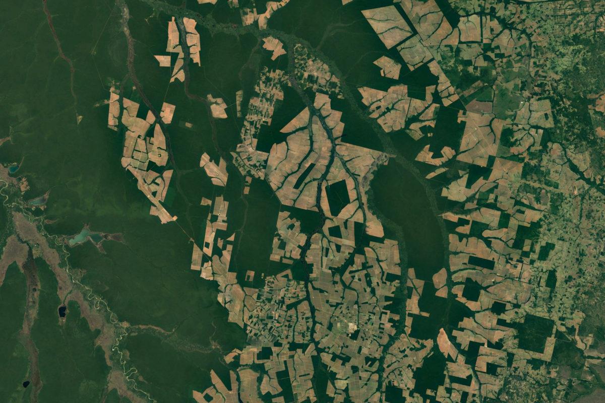 조각조각 나면서 파괴되는 브라질 열대우림. [중앙포토]