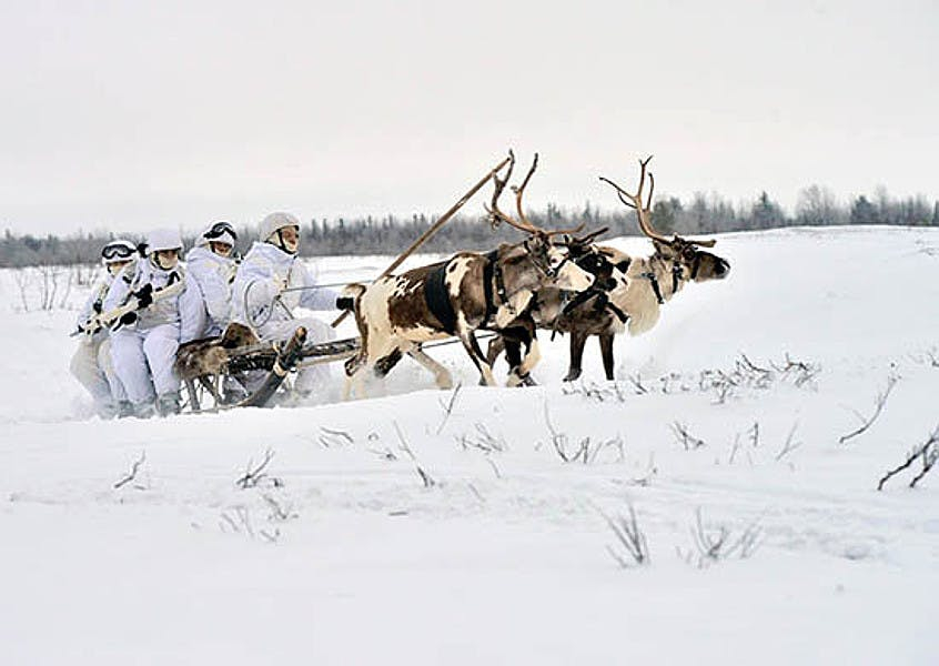 순록 썰매틀 타고 북극권 방어 훈련 중인 러시아 육군. [사진 러시아 국방부]