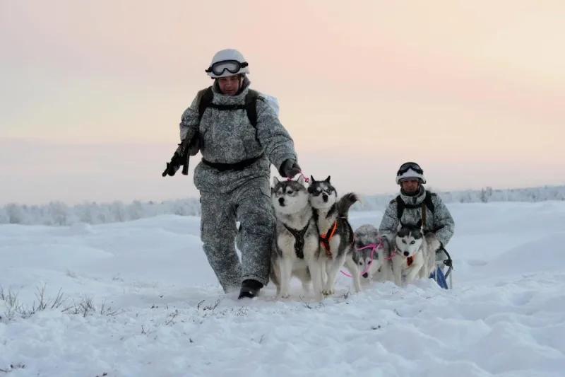개썰매로 이동 중인 러시아 육군. [사진 러시아 국방부]