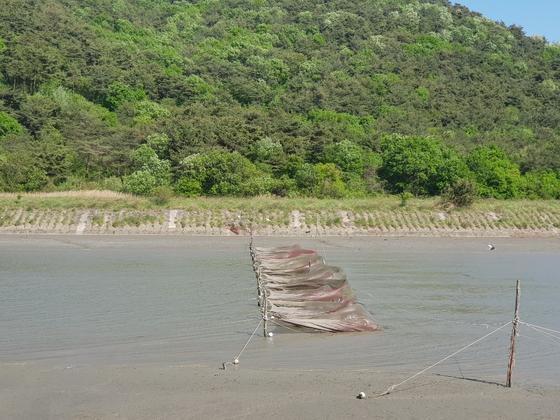 선운사가 자리 잡은 고창은 풍천장어의 고장으로 유명하다. 곳곳에 장어 치어를 잡기 위한 그물이 보인다. 풍천장어는 민물에서 7~9년을 자란다. [사진 윤경재]