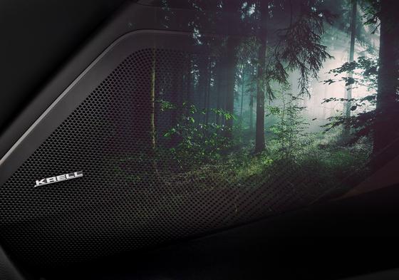 '생기 넘치는 숲' 테마를 선택하면 K7에 장착한 크렐 스피커가 숲소리를 전달한다. [사진 기아자동차]