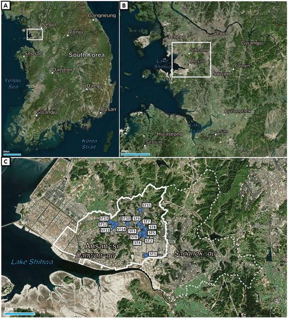 연구 대상 지역인 안산시 단원구 지도. 세 번째 지도의 파란색 점은 '실시간 모기발생정보 모니터링 시스템(DMS : Digital Mosquito monitoring System)'을 통해 모기발생정보를 수집한 장소를 나타낸다.