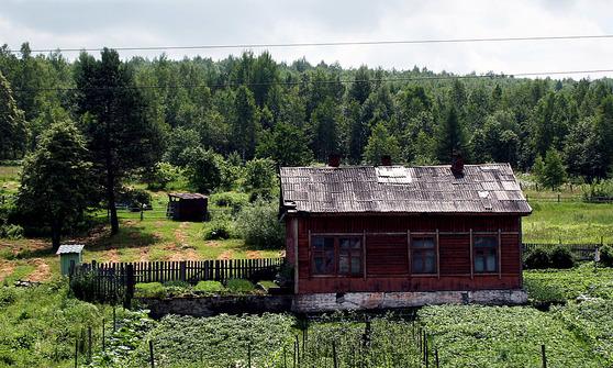 시베리아의 전형적인 농가. 목재가 풍부해 슬레이트 지붕과 유리창을 빼곤 모두 나무로 지어졌다. 연구진에 따르면 2080년대가 되면 이같은 농가를 더 많이 보게 될 수 있을지도 모른다. [중앙포토]