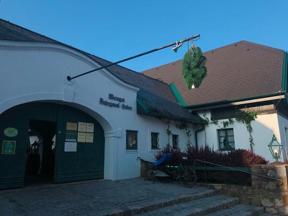 호이리게 중 하나인 '퓨어가슬-후버(Fuhrgassl-Huber)'의 문 앞에 걸려있는 솔가지. 술이 있다는 의미로 솔가지를 걸어두던 풍습에서 유래했다. 유지연 기자