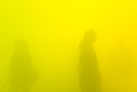 앤 베로니카 얀센스(Ann Veronica Janssens), (2017 Artificial fog), [사진 Andrea Rossetti 촬영, 에스더 쉬퍼 갤러리]