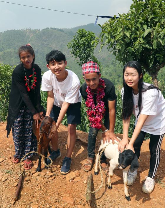 지난 17일 네팔 다딩 지구의 고산마을에서 한국 청소년들이 '패싱 온 더 기프트(Passing on the Gift)' 행사 차원에서 네팔 청소년들에게 염소를 전달하고 있다. 최승식 기자
