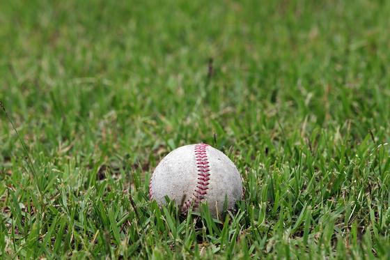 전직 프로야구 선수가 운영하는 유소년 야구단에서 아이들에게 스테로이드를 불법 투약했다는 의혹이 제기돼 식약처가 수사에 나섰다. *기사 내용과 관계없는 이미지 사진 [pixabay]