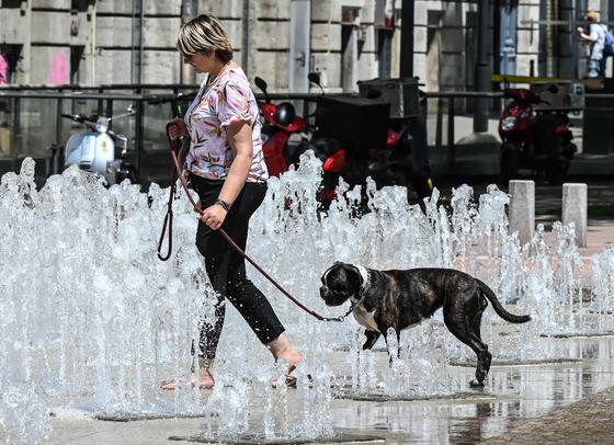 한 여성이 24일 프랑스 리옹거리의 분수대 사이로 개와 함께 걸으며 더위를 식히고 있다.[AFP=연합뉴스]
