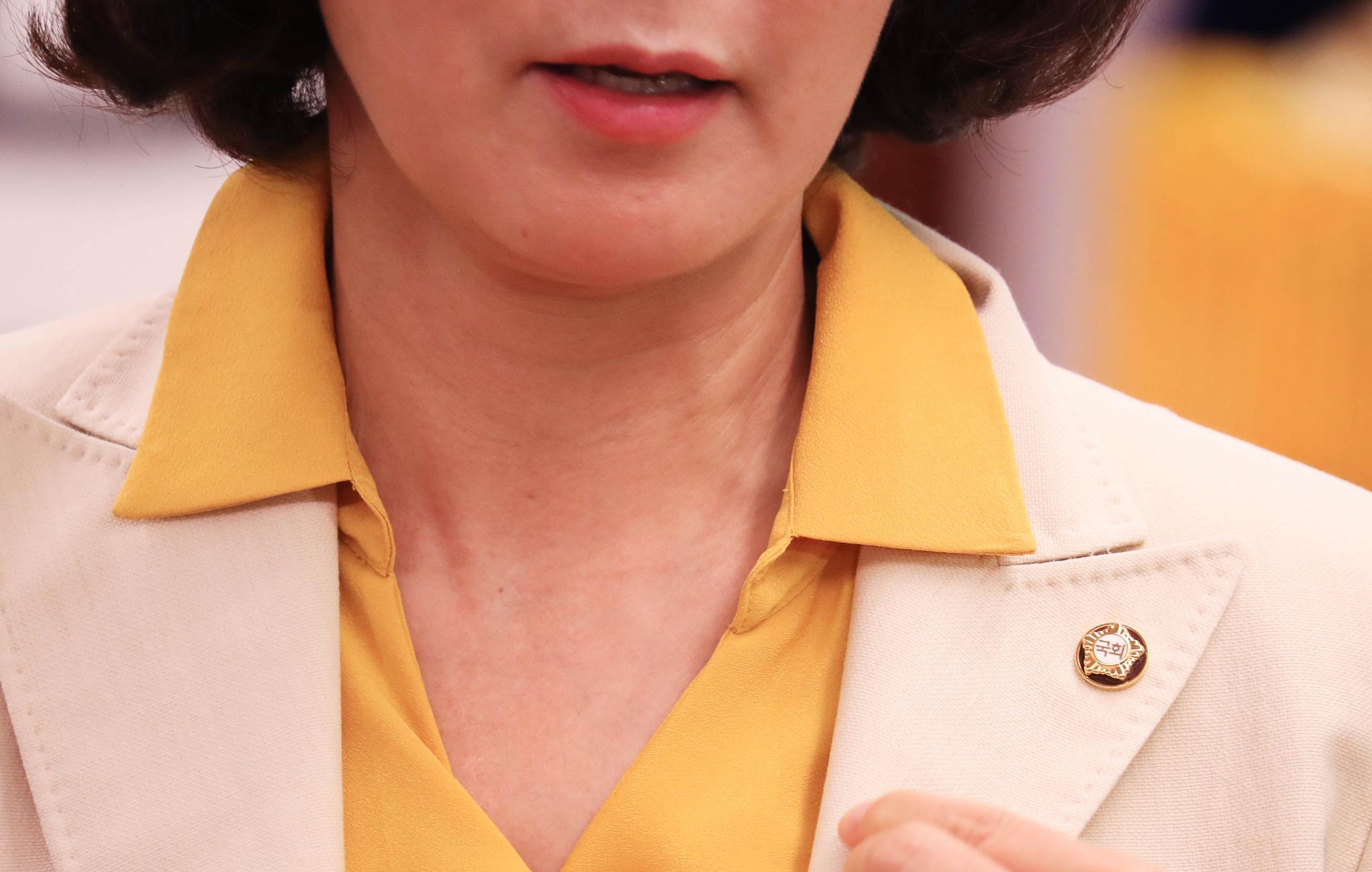 나경원 자유한국당 원내대표가 8일 오전 국회의장실에서 문희상 국회의장이 선물한 '여성용 국회의원 배지'를 달고 있다. 임현동 기자