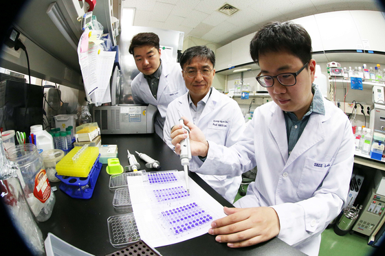 KAIST 바이오및뇌공학과 조광현 교수의 실험실. 석박사 과정 학생들이 연구에 몰두하고 있다. [사진 KAIST]