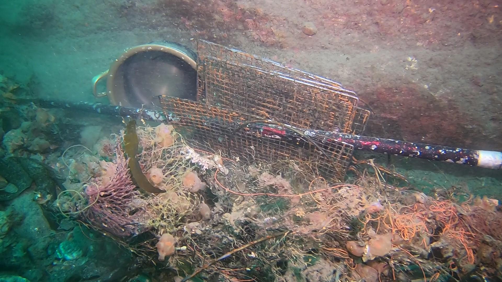 제주 차귀도 바닷속에서 발견한 쓰레기들. 사진을 클릭하면 더 많은 사진을 볼 수 있습니다. [사진 문섬 47회]
