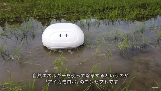일본 닛산의 기술자인 테츠마 나카무라가 개발한 로봇 오리. 친환경 오리농법을 응용했다. [닛산 동영상 캡처]