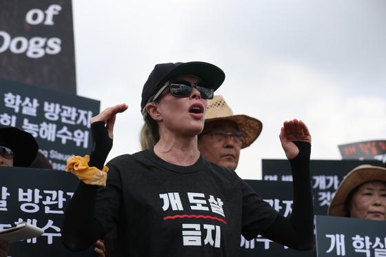 복날 킴 베이싱어는 국회서 시위하지만, 개 도살 금지 법안은 여론 눈치만