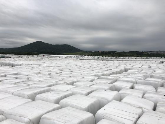 제주시 회천동 북부광역환경관리센터 매립장에 처리되지 못한 압축 쓰레기 5만여t이 쌓여 있다. 천권필 기자