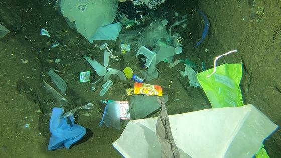 제주 차귀도 바닷속에 비닐 등 쓰레기가 가득 차 있다. [사진 문섬 47회]