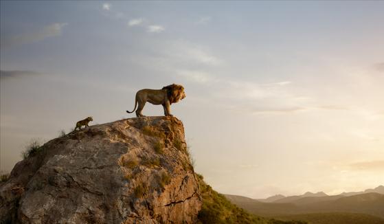 2019년 존 파브로 감독이 연출한 실사 CGI 버전으로 돌아온 '라이온 킹'. [사진 월트디즈니컴퍼니 코리아]