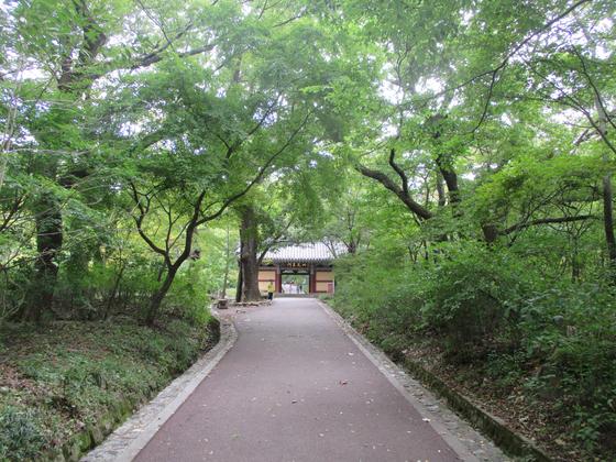 계룡산국립공원 갑사. [사진 국립공원공단]